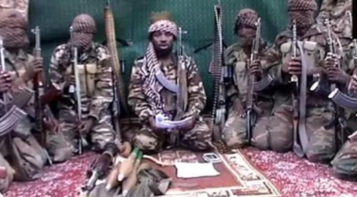 Boko Haram Leader Shekau Committed Suicide