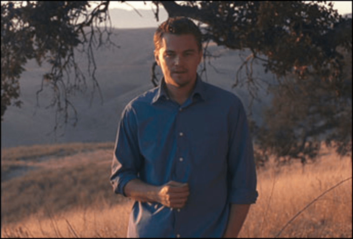 Blame It on Leo: DiCaprio is a colorless pitchman for green thinking.