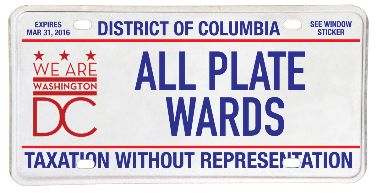 Blanked vehicle license plate