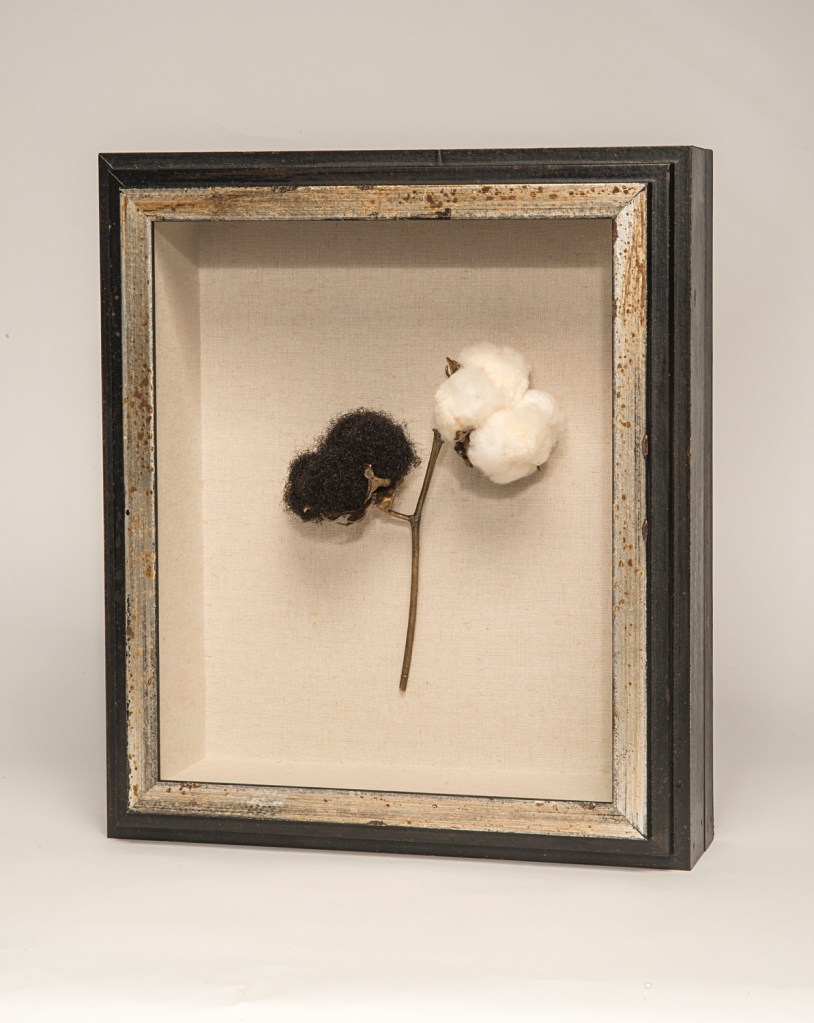 """""""Cotton to Hair"""" by Sonya Clark, part of Sonya Clark: Tatter, Bristle, and Mend"""