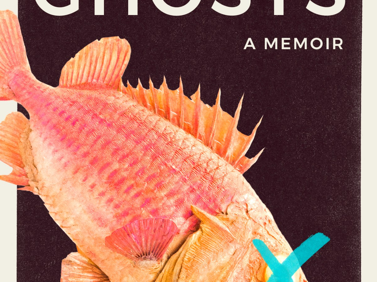 The cover of Seeing Ghosts.