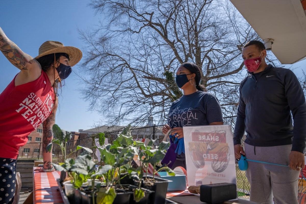 Reana Kovalcik manning a Share a Seed table