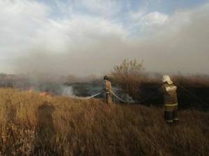 В Ростовской области локализовали крупный природный пожар