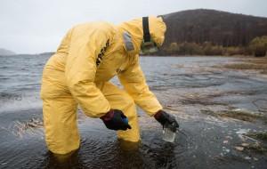 Greenpeace нашёл тяжёлые металлы и биопестициды в пробах воды с Камчатки