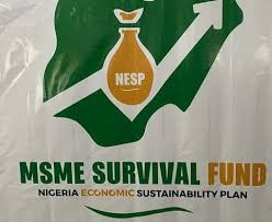 Full List of Requirements To Qualify For FG Business Survival Loans