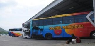 bus-mudik-gratis
