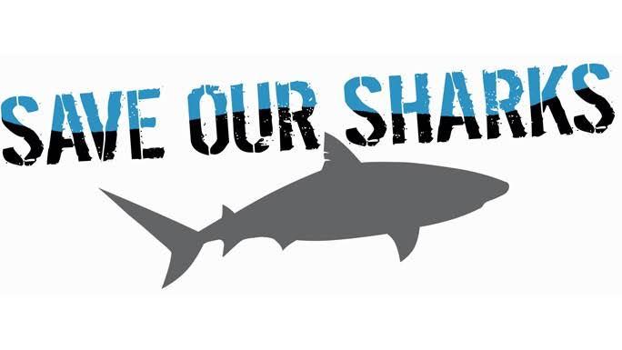 save-our-shark