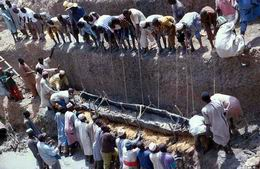 """The """"Dufuna boat"""" is about 4000 years older than the oldest boat found in Egypt."""