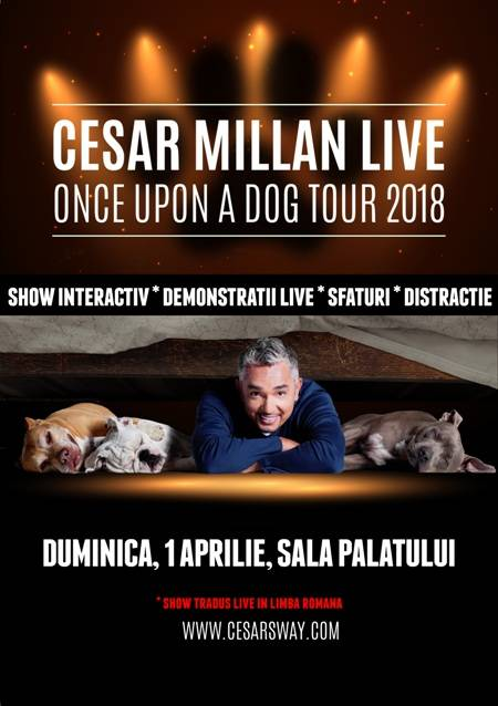 cesarmillanbucuresti