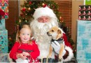 (Image) sparky, piper, rescued puppy, chrsitmas