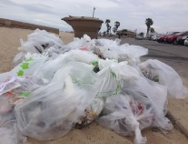 Bags of trash from beach clean up