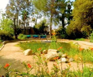 El Modena Nature Center