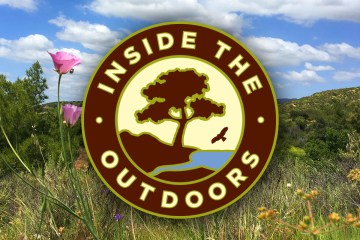 Inside the Outdoors logo