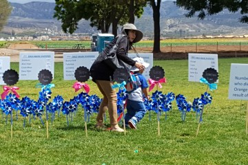 A blue pinwheel garden, planted to generate awareness of child abuse and prevention