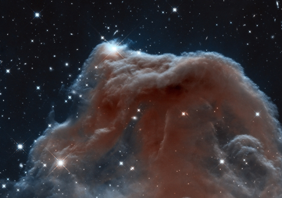The edge of the Horsehead nebula, where it touches the empty space outside it, is rich in carbon. NASA, ESA, and the Hubble Heritage Team (STScI/AURA)