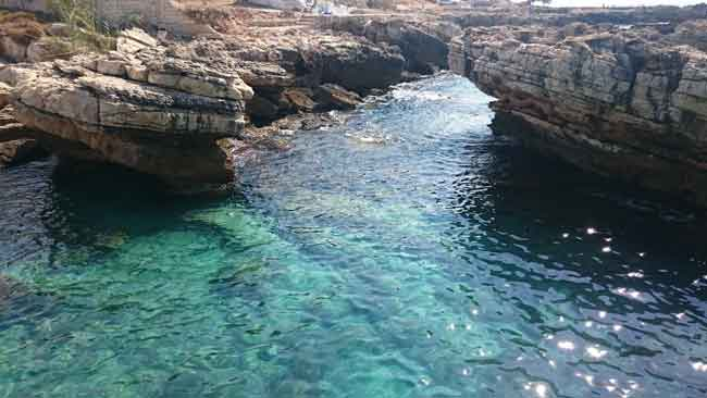 Kfarabida is home to Lebanon's cleanest waters and is renowned for being a marine eco-haven | Source: Newsroom Nomad