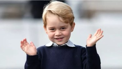 Photo of Prince George will be the hero of the animated series