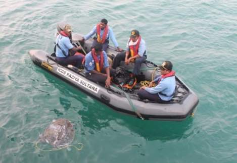 1 2 1 - Indian Coast Guard's 'Operation Olivia' Protects Endangered Olive Ridley Turtles