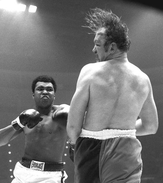 RICHFIELD, OH - MARCH 24, 1975: Heavyweight boxer Muhammad Ali hits Chuck Wepner during a heavyweight title fight on March 24, 1975 at the Richfield Coliseum in Richfield, OH. Ali won the bout with a TKO in the 15th round. 19750325-001 1975 Paul Tepley Collection/Diamond Images *** Local Caption *** Chuck Wepner;Muhammad Ali