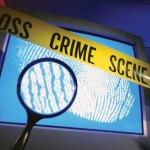 Homeowner shoots bandit dead