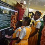 National Museum enters the digital information age