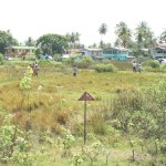 Central Housing and Planning Authority warns land grabbers again about illegal squatting