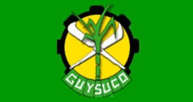 guysucologo