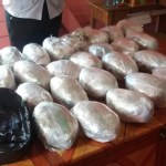 Woman among five arrested for 25 pound marijuana bust