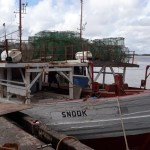 Labour Department launches probe into Fishing Tragedy at Sea