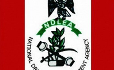 NDLEA.NS  - NDLEA impound 11 containers of tramadol, worth ₦241 million