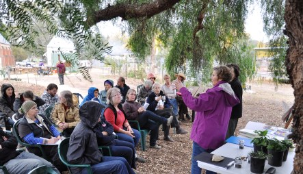 learning the art of composting at Newstead Community Garden
