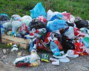 LUPTA împotriva plasticului. Grupul Veolia, EXPOZIȚIE la Muzeul Antipa