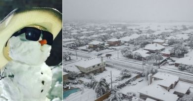 18 Incredible Photos from the Texas Snowstorm 2