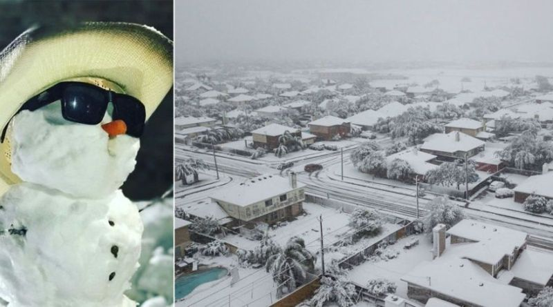 18 Incredible Photos from the Texas Snowstorm 14