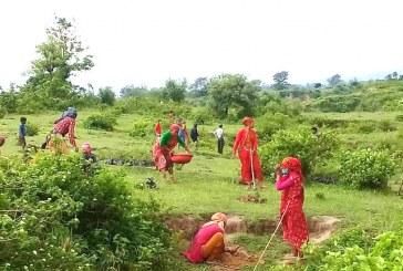 सप्तरीको अग्निसाईर र वनदेवी सामुदायिक वन अति संबेदनशिल क्षेत्र घोषित