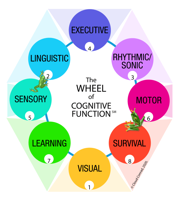 wheel-of-cognitive-function