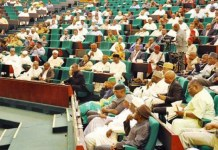 Reps to investigate police protest in Maidugiri