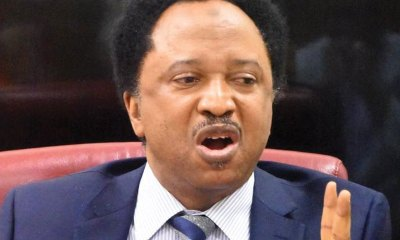 Insecurity: North under siege, says Sen. Sani