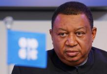 OPEC re-elects Barkindo as Sec-Gen; seeks global oil cut