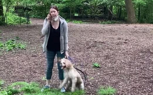 Central Park 'Karen' Gets Her Dog Back