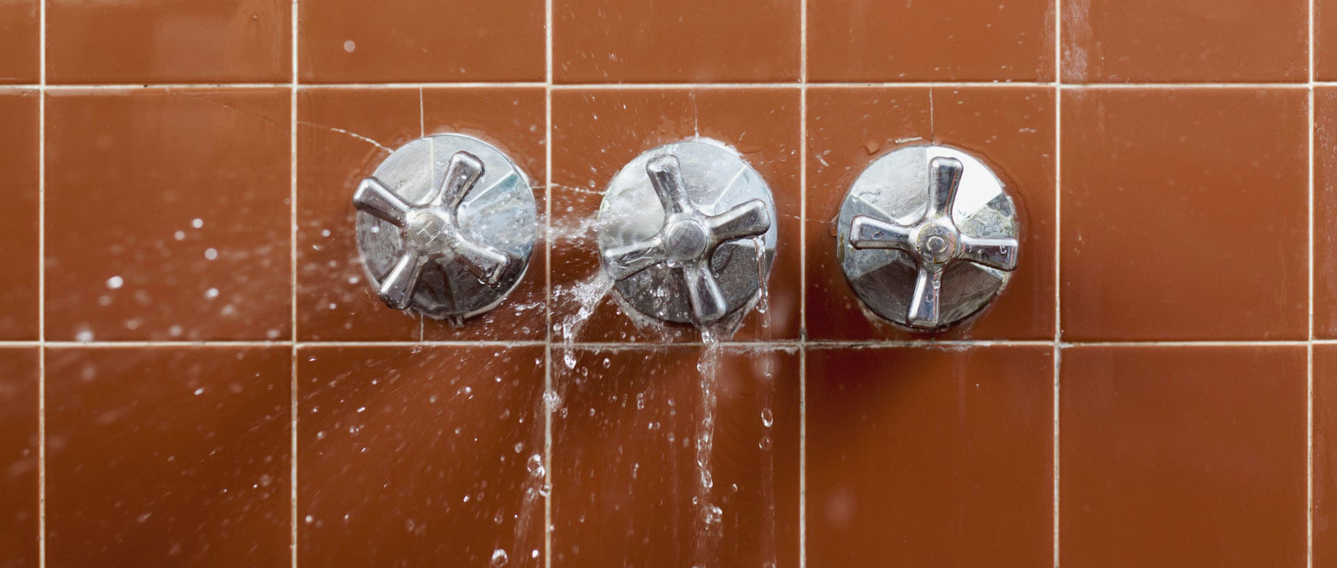 Spanish municipal councillor offers to resign after showering during live video meeting