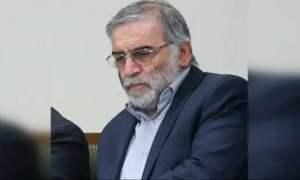 Iran's Top Nuclear Scientist Shot Dead