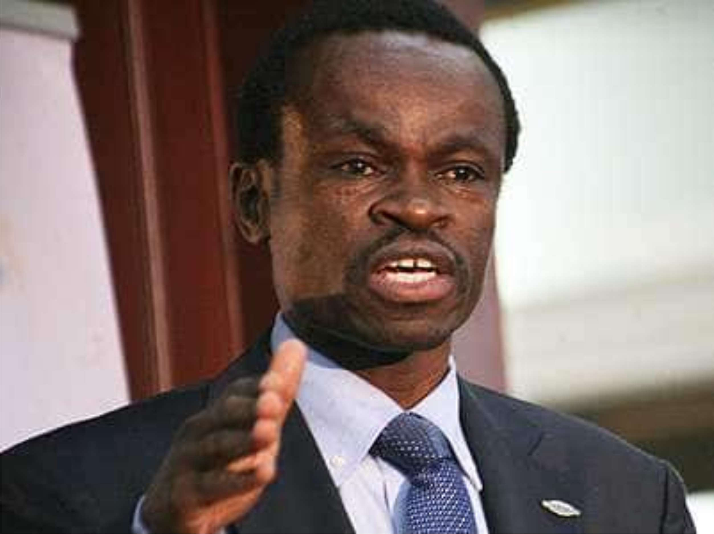 We Must Embrace Unity For Africa's Progress – – Lumumba