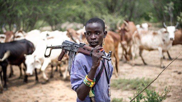 Image result for fulani herdsmen