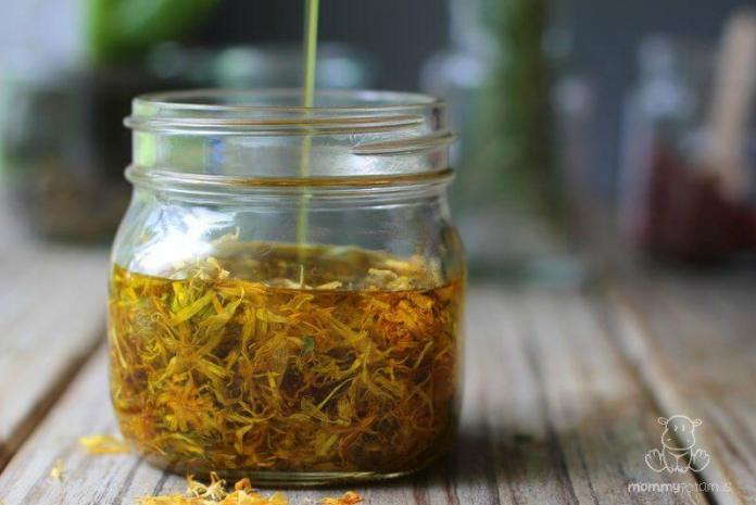 calendula oil recipe