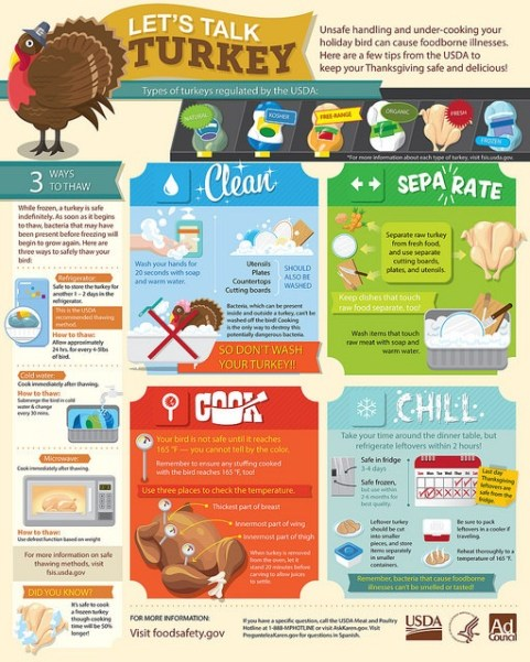 Turkey Infograph.jpg