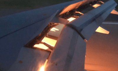 Saudi Arabia World Cup 2018 team plane catches fire in mid air after 'bird flies into engine'