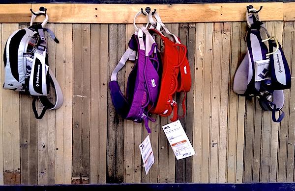 harnessbloginsta