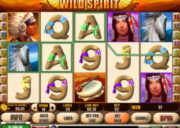 Wild Spirit Gamepaly
