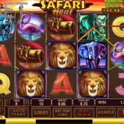 safari-heat-newtown-casino-slot-picture-1